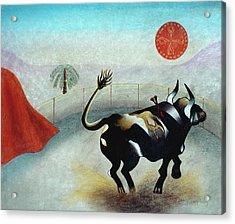 Bull With Sun Acrylic Print by Sally Appleby