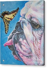Bulldog And Butterfly Acrylic Print