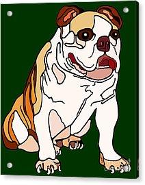 Bulldog Acrylic Print by Marian Cates