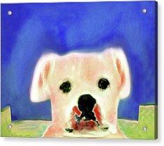 Bulldog Rana Art 7 Acrylic Print by Miss Pet Sitter