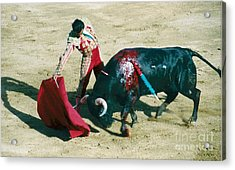 Bullfighter Acrylic Print by Brent Easley