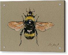 Bumble Bee Art Wall Acrylic Print by Juan  Bosco