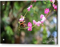 Acrylic Print featuring the photograph Bumble Bee1 by Megan Dirsa-DuBois