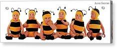 Bumblee Bees Acrylic Print