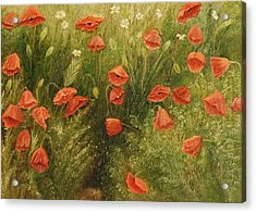 Bunch Of Poppies Acrylic Print