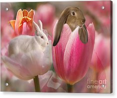 Bunny Blossoms Acrylic Print by Elaine Manley