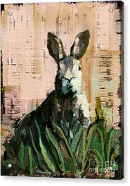 Acrylic Print featuring the mixed media Bunny by Carrie Joy Byrnes