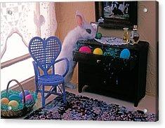 Bunny In Small Room Acrylic Print