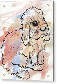 Bunny Love Acrylic Print