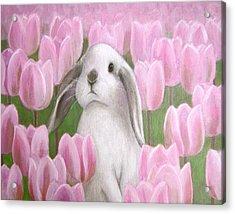 Bunny With Tulips Acrylic Print