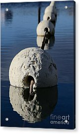 Acrylic Print featuring the photograph Buoy In Detail by Stephen Mitchell