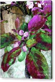 Buoyancy Of Nature Acrylic Print by Tlynn Brentnall
