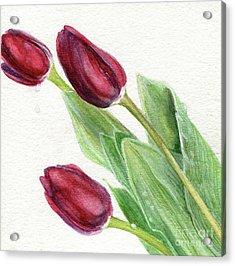 Burgundy Tulips Acrylic Print