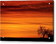 Burning Country Sky Acrylic Print by James BO  Insogna