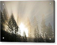 Burning Through The Fog Acrylic Print