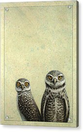 Burrowing Owls Acrylic Print