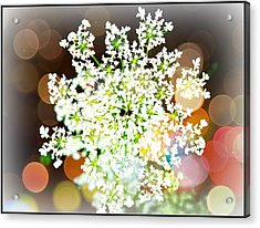 Burst Of Light Kaleidoscope Acrylic Print