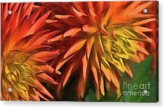 Bursting With Color Acrylic Print