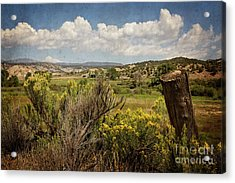 Bush Creek Acrylic Print