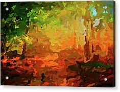 Bush Fire Acrylic Print