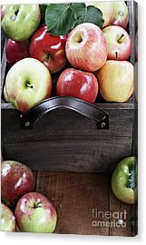 Acrylic Print featuring the photograph Bushel Of Apples  by Stephanie Frey