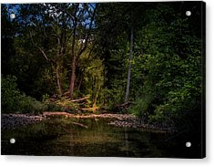 Busiek State Forest Acrylic Print