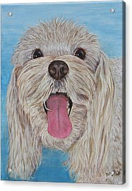 Acrylic Print featuring the painting Buster by Nancy Nale