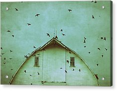 Busy Barn Acrylic Print by Julie Hamilton