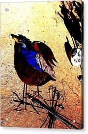 Acrylic Print featuring the photograph But It's A Dry Heat by Michelle Dallocchio