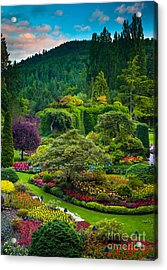 Butchart Gardens Sunset Acrylic Print by Inge Johnsson