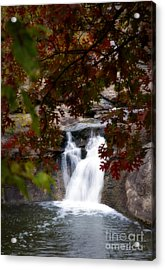 Butcher Falls In Autumn Colors Acrylic Print