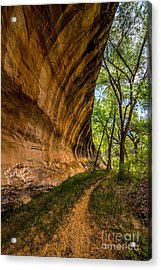 Butler Wash Wave Formation - Blanding - Utah Acrylic Print by Gary Whitton
