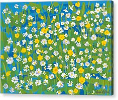 Buttercups And Daisies Acrylic Print by Sarah Gillard