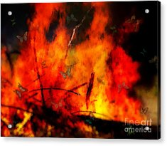 Butterflies And Flame Acrylic Print