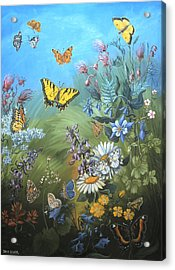 Butterflies And Wildflowers Of Wyoming Acrylic Print by Dawn Senior-Trask