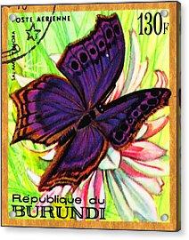Butterflies Salamis Temora Acrylic Print
