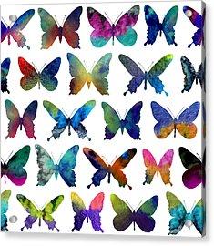 Butterflies Acrylic Print by Varpu Kronholm