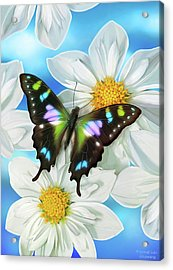 Butterfly 2 Acrylic Print by JQ Licensing