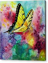 Butterfly 2 Acrylic Print by Dee Carpenter