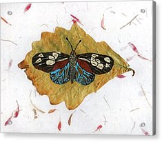Butterfly #2 Acrylic Print by Ralph Root