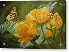 Butterfly Among Yellow Flowers Acrylic Print
