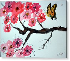 Butterfly And Blossoms Acrylic Print by Warren Thompson