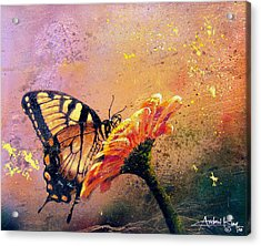 Butterfly Acrylic Print by Andrew King