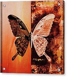 Butterfly Art 88u Acrylic Print by Gull G