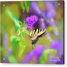 Acrylic Print featuring the photograph Butterfly Art - Eastern Tiger Swallowtail by Kerri Farley