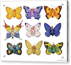 Butterfly Babies Acrylic Print