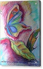 Butterfly Beauty Acrylic Print by Jamey Balester