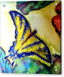 Butterfly Acrylic Print by Beverly Johnson