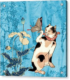 Butterfly Charmer Acrylic Print
