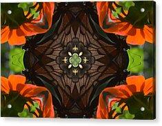 Butterfly Corner Acrylic Print by Chad Wasden